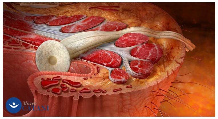I dolori gravi in dorso passano a gravidanza